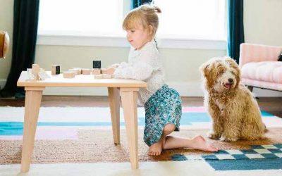 Rêve de Pan : meubles, déco et jeux enfant en partie «made in France»