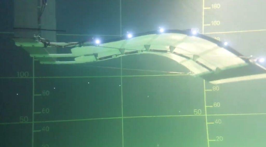 La start-up Eel Technology a mis au point un moyen de produire de l'énergie grâce à l'ondulation de la mer et des cours d'eau.