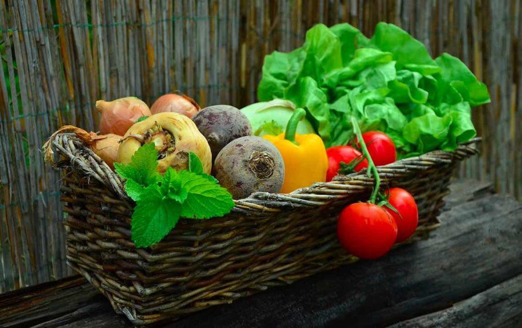 Faire son jardin ou entretenir ses jardinières sans devoir pour autant utiliser des produits phytosanitaires nocifs pour la santé et la nature. C'est possible grâce à monjardinbio.com, qui en outre commercialise une majorité de produits locaux.