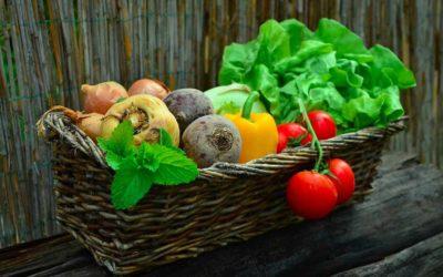 Monjardinbio.com, ou comment jardiner bio et local