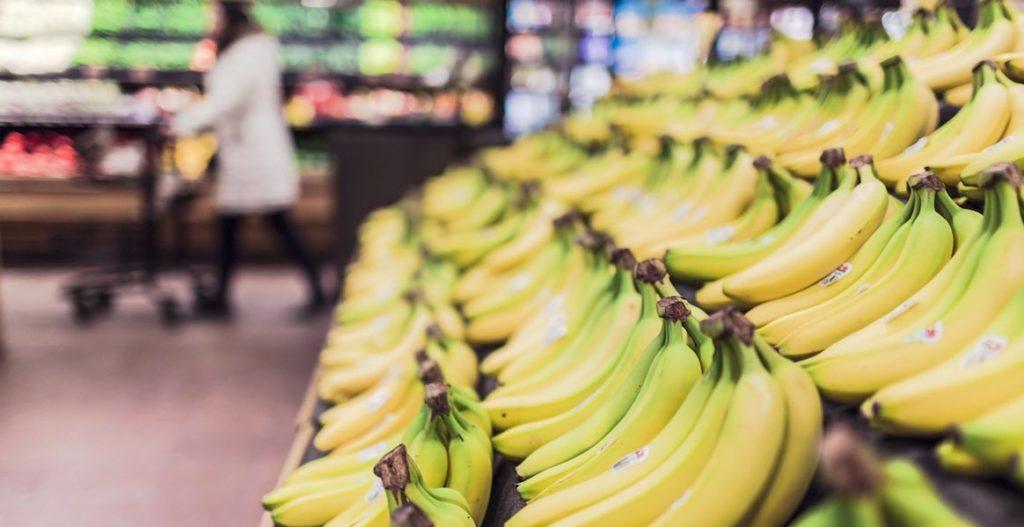 La maladie de Panama menace de détruire les plantations de bananes d'Amérique centrale et de Colombie.