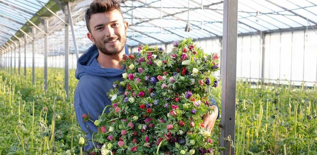 Monsieur Marguerite travaille uniquement avec des horticulteurs français.