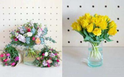 Monsieur Marguerite : fleurs de saison cultivées en France